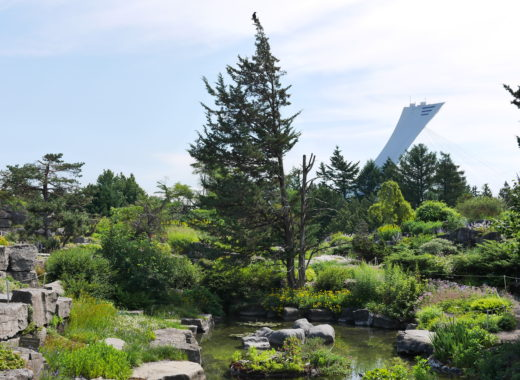 biodome jardin montreal