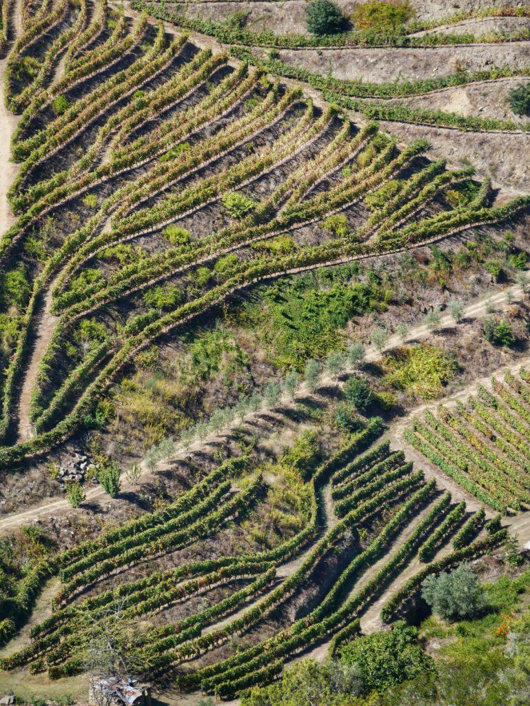vallee douro
